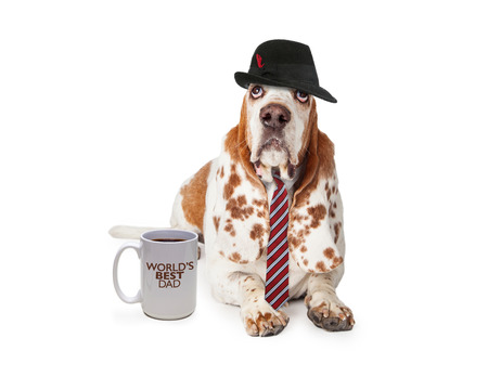 high day: Funny photo of a Basset Hound dog dressed as man on Fathers Day with a coffee cup saying Worlds Best Dad.