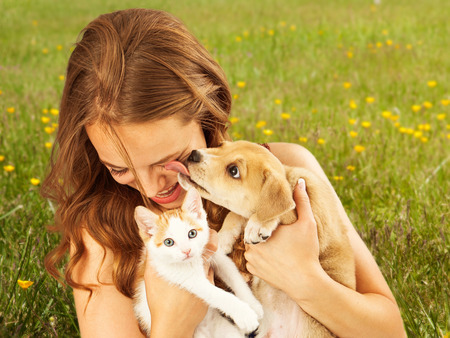 dog and cat: A cute young puppy licking the face of a pretty young girl as she is laughing