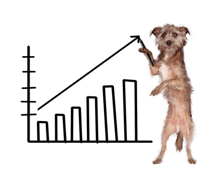 Funny image of a dog drawing a bar chart showing increasing in sales