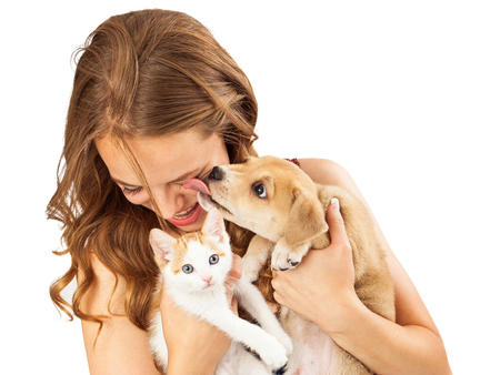 A pretty young girl holding a cute orange tabby kitten and an affectionate puppy that is licking her face as she is laughing Stock Photo