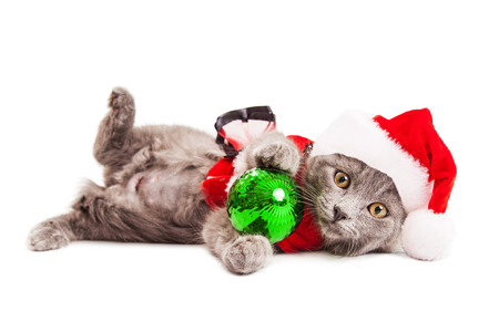 st nick: Adorable young kitten wearing a Christmas Santa Claus outfit laying on side over white while holding a green tree ornament Stock Photo