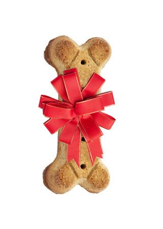 dog biscuit: Bone shaped dog biscuit with a red Christmas holiday bow Stock Photo