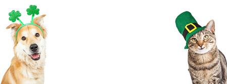 행복하고 웃는 고양이와 수평 웹 사이트 배너 세인트 패 트 릭의 날 모자를 착용하는 골든 리트리버 잡종 개 스톡 콘텐츠