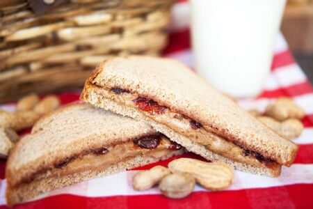 picnic tablecloth: Picnic lunch with peanut butter and jelly sandwich and milk on red and white checkered tablecloth