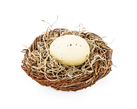 large bird: Large bird egg resting in a basket with nesting material