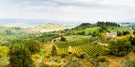 Beautiful scenic view of rolling hillside in Tuscany region of Italy Stock Photo - 53901057