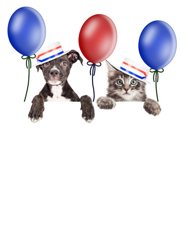 Puppy and kitten hanging over banner with room for text, wearing American politician hats. Add your election voting message to blank sign.
