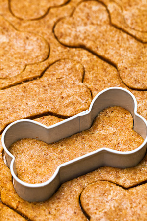 Fresh dog biscuit dough with bone-shaped cookie cutter
