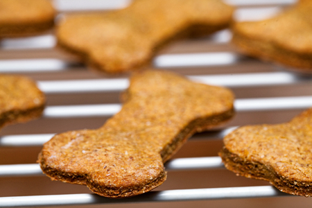 Batch of fresh homemade dog biscuits hot out of oven, cooling on rack Archivio Fotografico