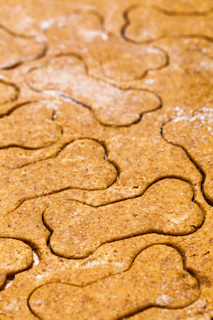 dog biscuit: Homemade dog biscuit dough with bone-shaped cut outs Stock Photo