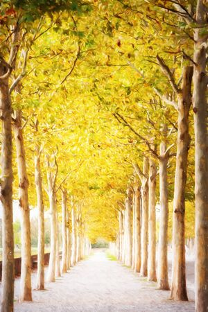 pathways: Digital painting of brightly lit pathway lined by trees with colorful yellow leaves  in Autumn Stock Photo