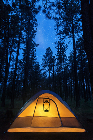 Camping tent in the forest illuminated by a lantern at night under the stars Stockfoto