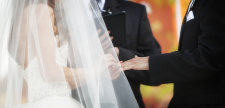 Horizontal banner of bride and groom exchanging wedding rings