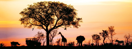 Silhouette of African safari scene with animals and vehicle