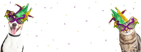 Dog and cat Mardi Gras party horizontal banner with room for text Foto de archivo