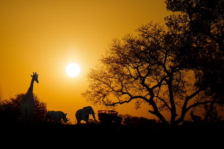 animales safari: Golden sunset in South Africa with wild animals and safari truck in silhouette with copy space Foto de archivo