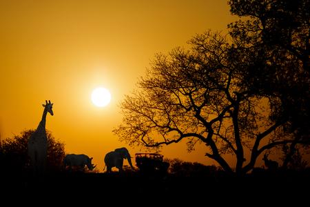 Goldener Sonnenuntergang in Südafrika mit wilden Tieren und Safari-LKW in der Silhouette mit Kopienraum Standard-Bild