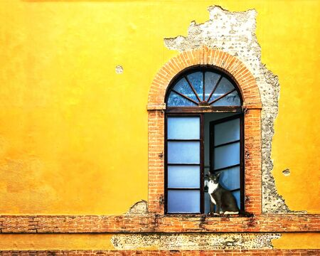 Open window and outside weathered facade of colorful yellow home in Siena Italy Stock Photo - 76714283