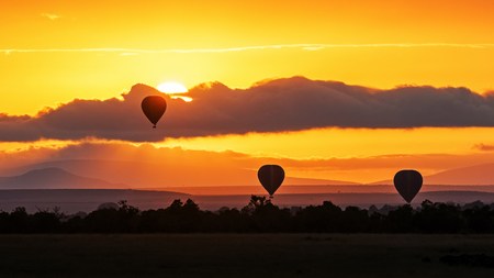 Hot air balloons rising up in the bright orange sky of the Masai Mara in Kenya, Africa at sunrise