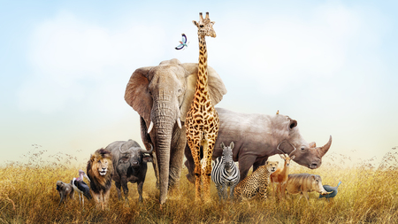Large group of African safari animals composited together in a scene of the grasslands of Kenya. Фото со стока