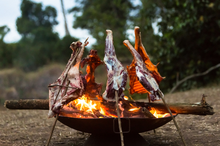Goat meat on wood skewers cooking over an open fire pit on a camp site in the Mara Triangle in Kenya Africa