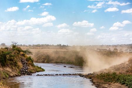 Breed beeld van een kudde gnoes die de Mara-rivier in Kenia, Afrika oversteken tijdens het grote migratieseizoen met safaritoeristische voertuigen met uitzicht op de rivieroever Stockfoto