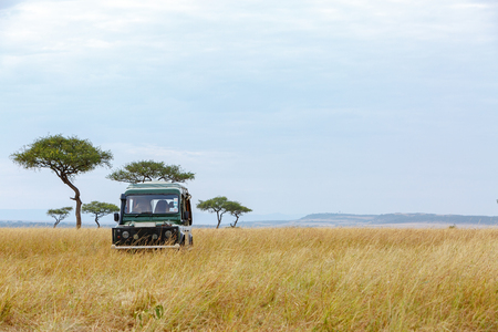 Safari tourist game drive vehicle parked in the grasslands of Kenya, Africa with Acacia trees and copy space in open sky