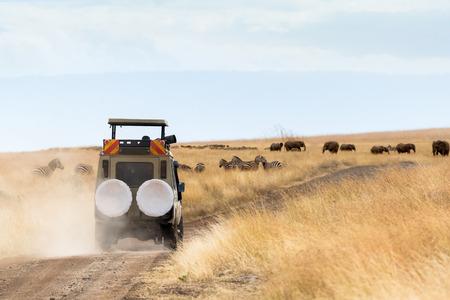 Fotograf der Safari-Pirschfahrt im Fahrzeug mit Zebra und Elefanten in der Ferne Standard-Bild - 93247267