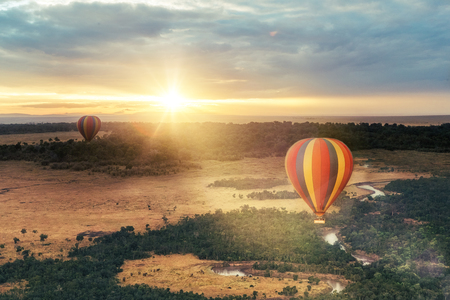 Beautiful aerial view of colorful hot air balloons floating over the Masai Mara National Reserve at golden sunrise