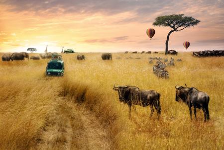 Dromerige fantasiescène van een game drive van een dieren in het wild safari door graslanden van Kenia, Afrika bij zonsopgang
