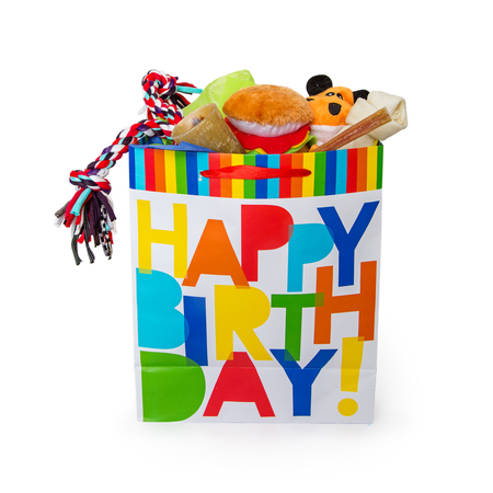 Colorful Happy Birthday gift bag filled with toys and treats for a pet dog 版權商用圖片