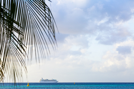 Cruise ship on Caribbean Sea with palm tree leaves and room for text in open sky 版權商用圖片 - 100935990