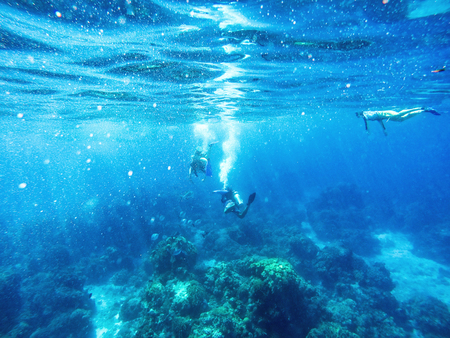 Scuba divers and snorkler in the blue water of the Caribbean Sea in Cozumel, Mexico