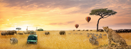 African safari dreamy scene with wildlife and safari vehicle. Horizontal web banner.