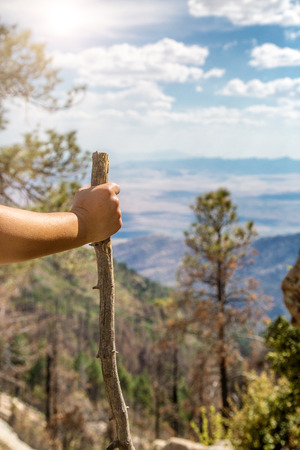 Closeup of a hand on a walking stick of a person hiking in the Coronado National Forest on Mount Graham in Arizona Banco de Imagens