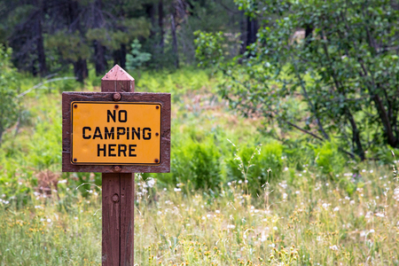 No Camping Here wood sign post in a forest field with copy space Stock fotó