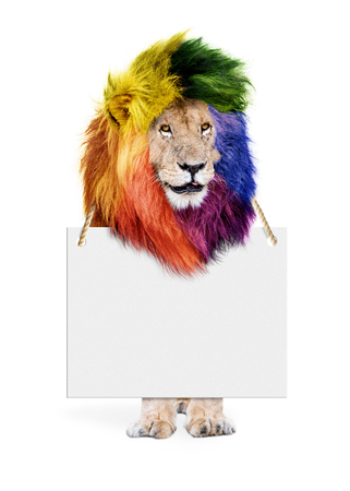 Famous African lion named Scar standing on white Stockfoto - 104213720