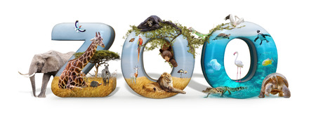 Zoo word in 3D with African nature wildlife animals and aquarium conceptual scene Imagens - 107342595