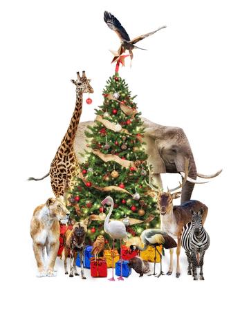 Group of zoo wildlife around a decorated Christmas tree.