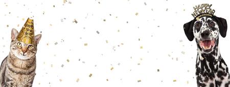 Perro y gato felices juntos celebrando la víspera de Año Nuevo con sombreros de fiesta con confeti cayendo. Encabezado del sitio web con espacio para texto Foto de archivo