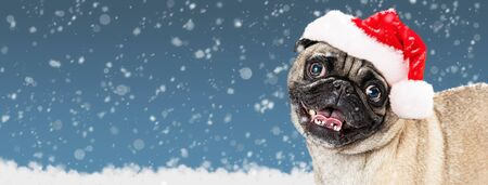 Funny Christmas Pug dog wearing Santa Claus hat. Web banner or social media cover with room for text in snowy sky background