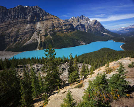 Peyto is a glaciated lake in Banff Alberta Canada. It gets its color from the sediments of the glacier melt.