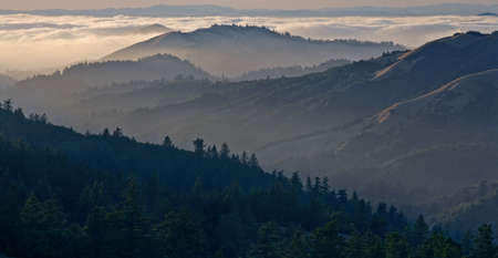 Bolinas Ridge is a north-south ridge in southwestern Marin County, California. Фото со стока