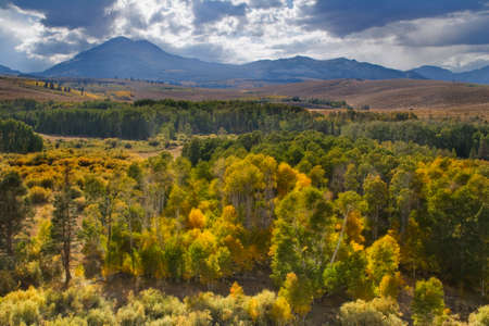 Conway Summit is a mountain pass in Mono County, California.