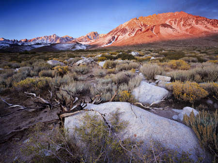 uttermilk Hill is located in the Tungsten Hills just west of Bishop, California.