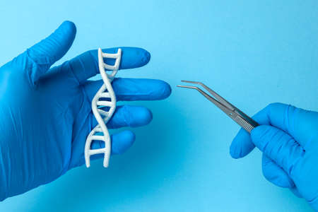 DNA helix research. Concept of genetic experiments on human biological code DNA. Scientist holding DNA helix and tweezers