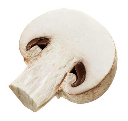 One fresh mushroom champignon cut in half isolated on white background