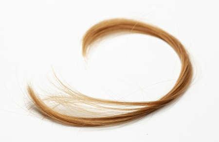 Cut hair curls on Gray Фото со стока