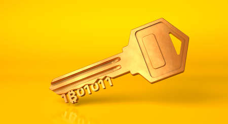 Bitcoin key. Golden key from cryptocurrency on a yellow background. 3d render