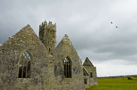 Overcast landscape of Ross Friary, Ireland  Stock Photo - 13687594